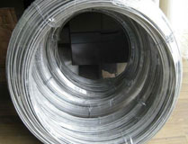 Hastelloy c276 alloy material 4mm flexible spring steel wire