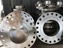 ANSI B16.5 Inconel Alloy 600 RTJ Flanges