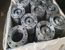 AISI Inconel 600 UNS N06600 Nickel Alloy Flange
