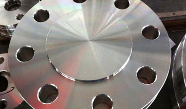 Stainless Steel F321 Forged Flange